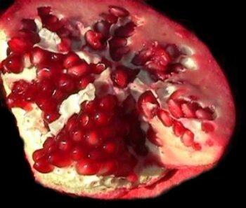 the subversive pomegranate